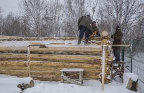 История строительства гриль-изб